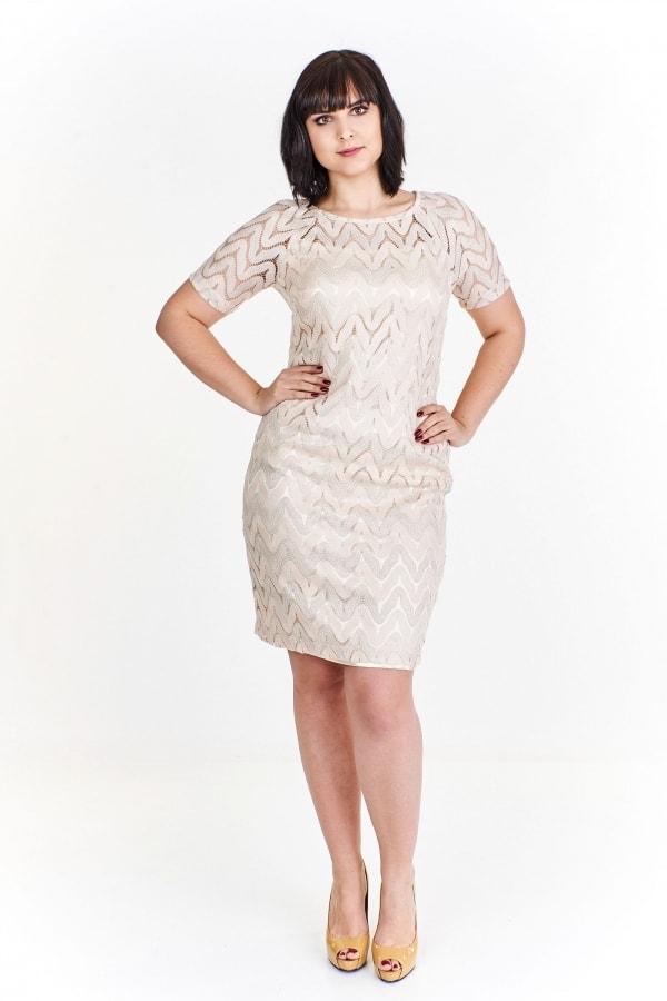 a043b6532b4 Pouzdrové šaty pro plnoštíhlé - Ptakmoda - Společenské šaty pro ...